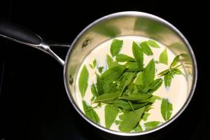 faire chauffer la crème, le sirop de canne et les feuilles de verveine