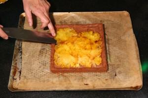 Disposez les tranches d'ananas dans le fond