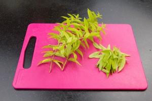 Détachez les feuilles de verveine.