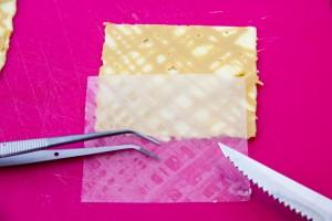 Puis avec un couteau et une petite pince ôtez les feuilles de rhodoïd