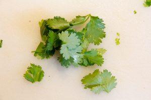 Prélevez les feuilles de coriandre