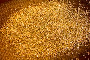 Puis torréfiez les graines de sarrasin à 180° au four pendant 10 mn